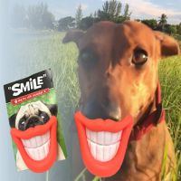 Smile Dog Toy with Squeaker